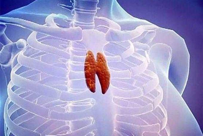 Диагностика, симптому и лечение рака средостения