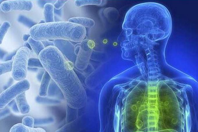 Что такое стафилококковая пневмония