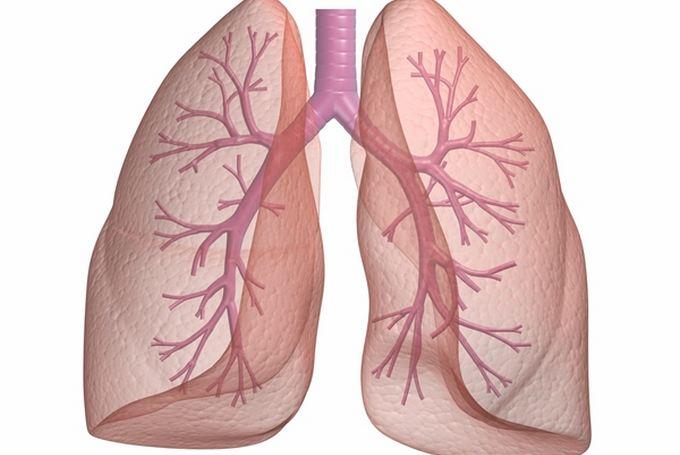 Лечение хронические неспецифических заболеваний легких